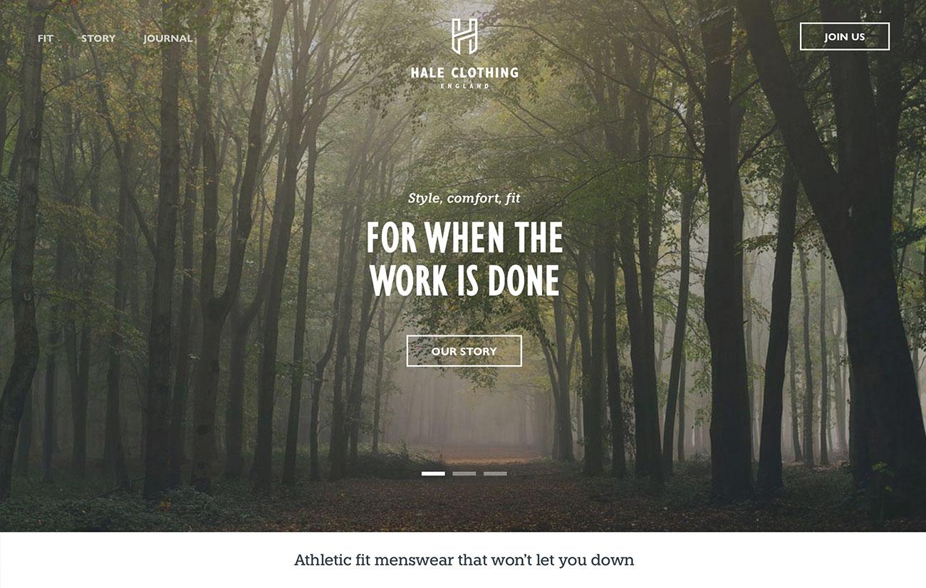 hale web design